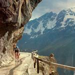 Giro d'Italia 2010, Stage 20: Gavia Pass, bicycle climb of dreams