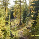 Winthrop Wonderland: Mountain Biking in the Methow Valley, Day Two