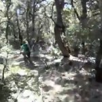 Forest of Nisene Marks Mountain Biking: Flowy singletrack defined