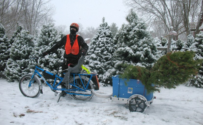 Christmas tree by bike, 2010