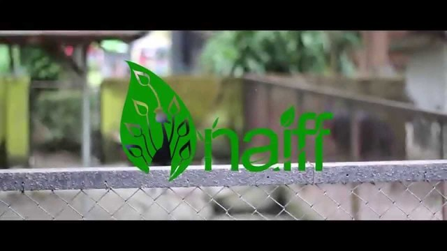Naiff – Native Indonesia Flora & Fauna