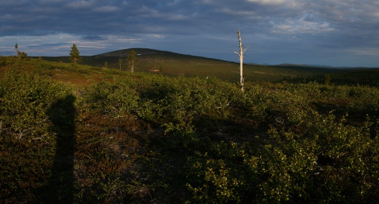 Fjelllandschaft in Lappland