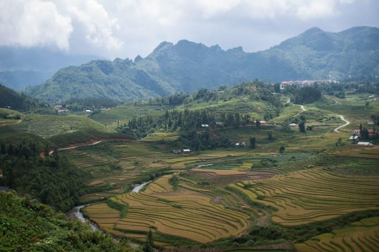 Berge und Reisfelder