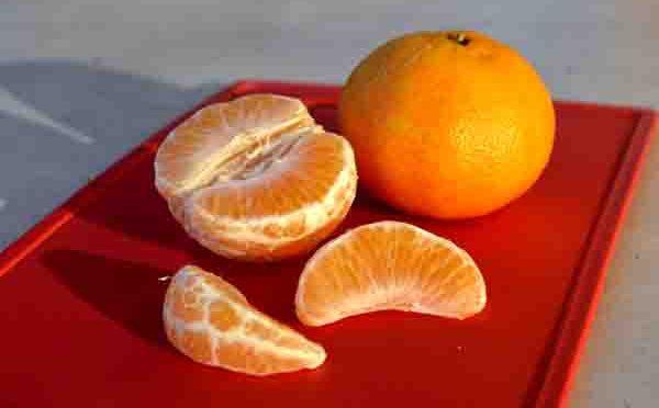 Zitrusfrucht Mandarine