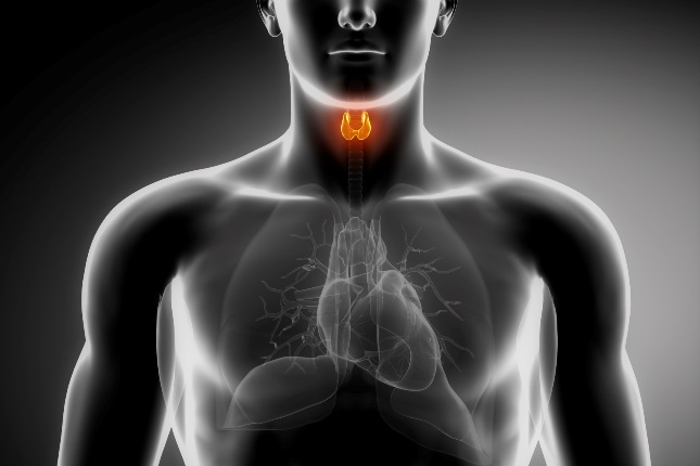 Easy Herbal Remedies For Thyroid Health