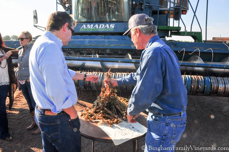 Putting faces on agriculture, our tour with Ted Cruz