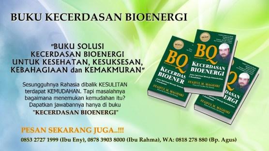 Buku Solusi Kecerdasan Bioenergi (BQ) Mengatasi Kesulitan Hidup Anda