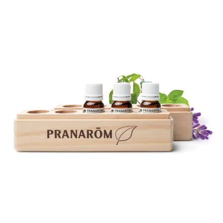 PranaBox Trio