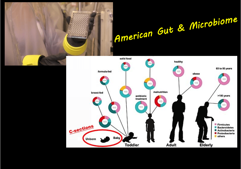 Optimal Microbiome Diet From American Gut Data
