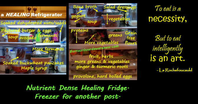 Nutrient Dense Healing Fridge