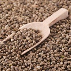 Konopné semienko nelúpané 250g