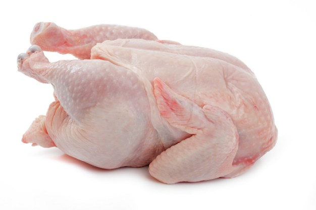 Resultado de imagen de pollo