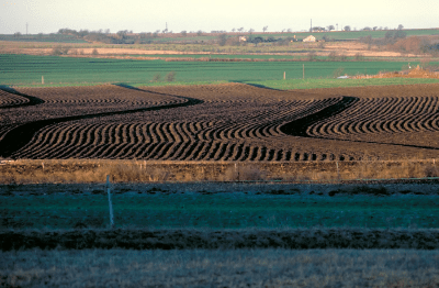 Ploughed-Field