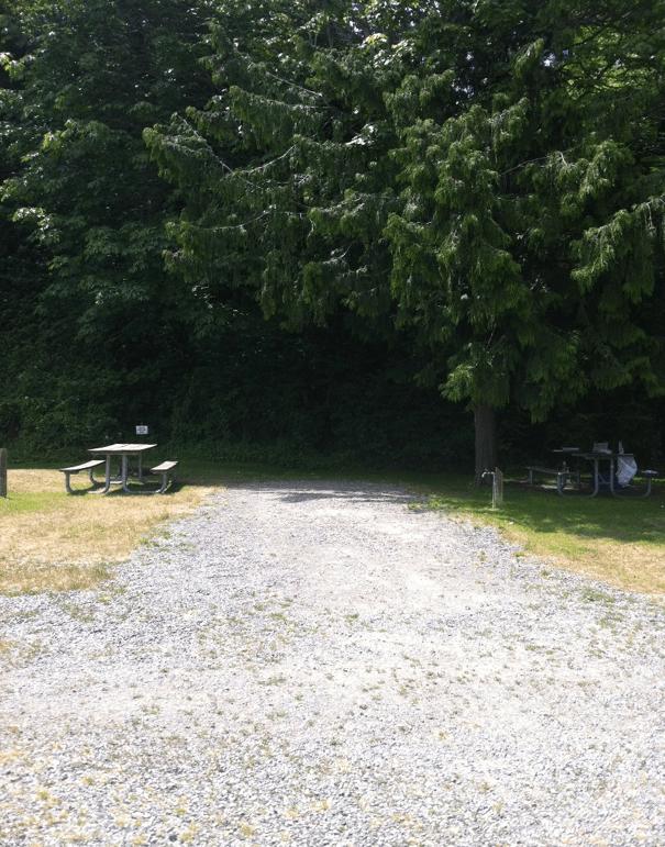 site14