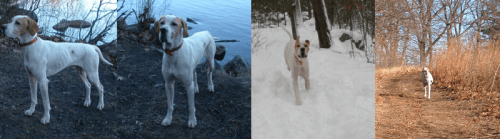 Here he is in Massachusetts at four years old at Lake Chauncy and five years old in the woods.