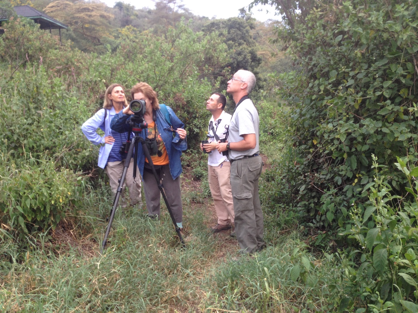 Israeli birders led YUVAL DAX, a bird guide and nature videographer. This was during the first trip to Kenya in September 2017. More about https://www.youtube.com/watch?v=jB6Qxu2WQXA