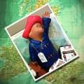 1.10.11 travel paddington bear