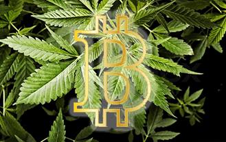 Blockchain, Bitcoin, ICOs, And The Cannabis Revolution