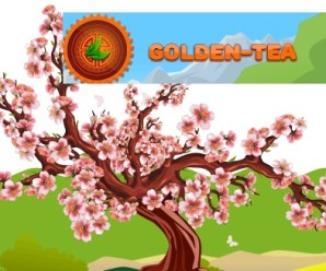 GOLDEN-TEA Gana Bitcoin Jugando