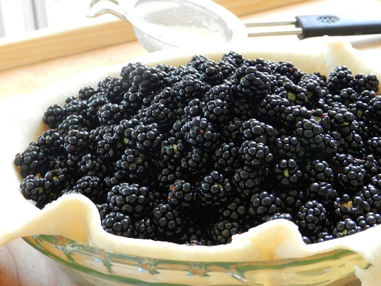 Blackberry Pie is 'blue-tooth' worthy