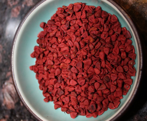 Whole bija annatto or achiote seeds. Cooking with bija or annatto seeds. biteslife.com