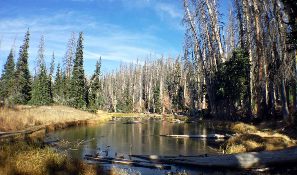 Alpine Pond at Cedar Breaks National Monument   Bites of Life