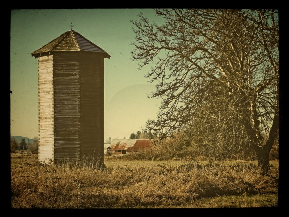 Love this old silo near our home. My sis showed me how to take a nice picture and make it great