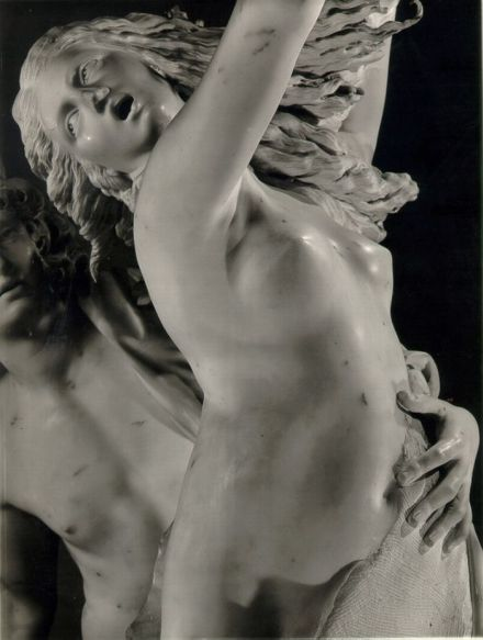 apollo and daphne detail 3 Bernini