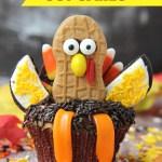 Tom Turkey Cupcakes