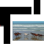 【パワーポイント講座】動画を再生するスライドを作成する5つの手順