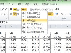 Excel_縦書き_3