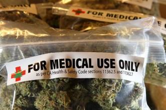 medical-marijuana-horizontal-large-gallery