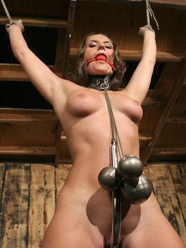 mistress tierra bust