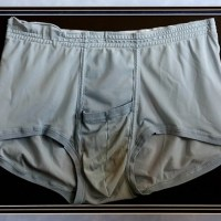 Want To Own Elvis Presley's Stinky Underpants?