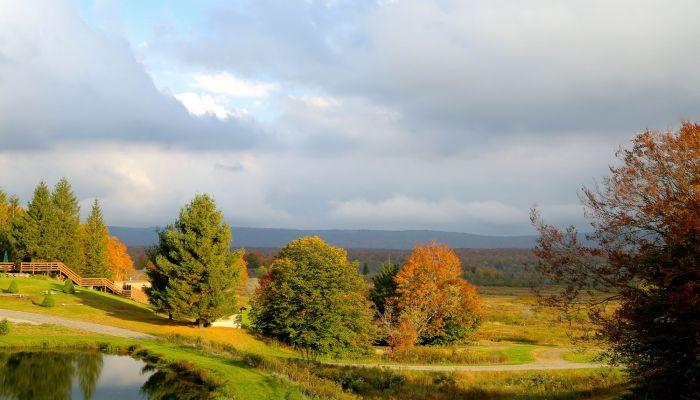 fall pond1
