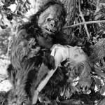 『キング・コング』(1933)以前のゴリラ映画
