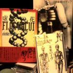 『虚空の花』南條竹則 『未来のイヴ』にまつわる批評風小説