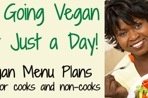 Vegan Eating Plan – Go Vegan for a Day