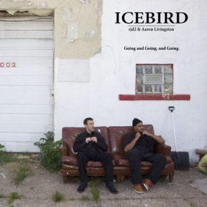 icebird