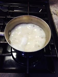 oatmeal (2)