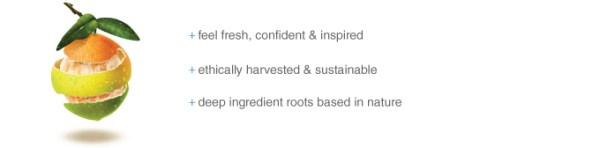 Citrus Clear ingredient-banner