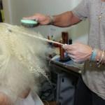 MIZANI for Victor dE Souza_Hair Technique Step3