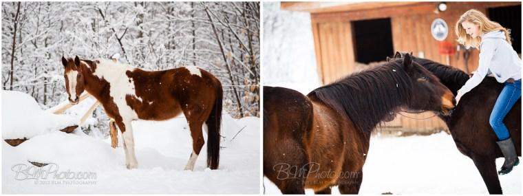 Kierstead-Horses-4