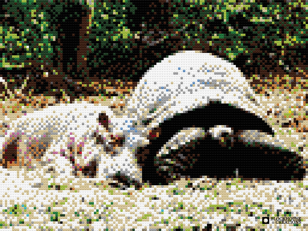 100 Days of Mosaics – Day 96 – Owen the hippo and Mzee the tortoise