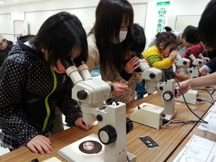 Children use microscopes to observe sand from geoparks around Japan and the world