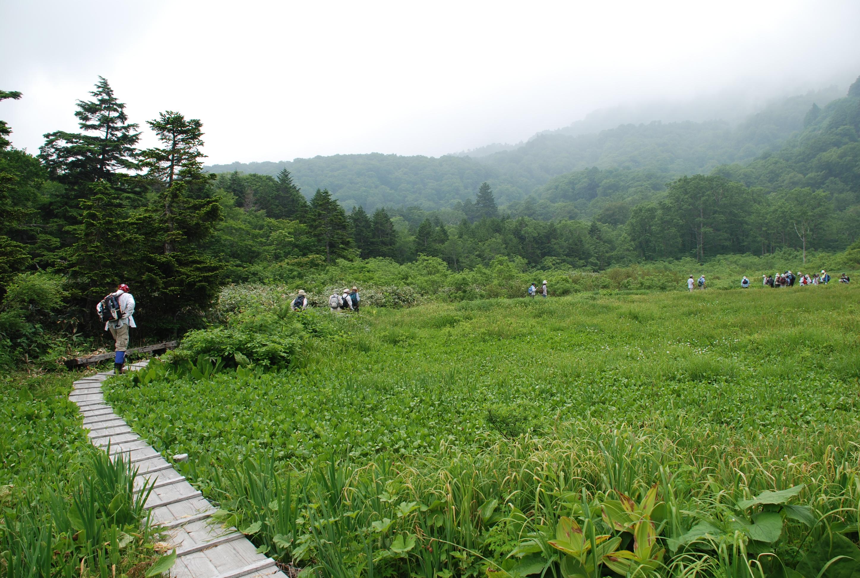 Trek the vast wetlands of Heima-no-Taira