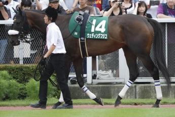 【競馬】 シゲル以外で馬名に人の名前が入っている馬を挙げてさっさと寝ろ!