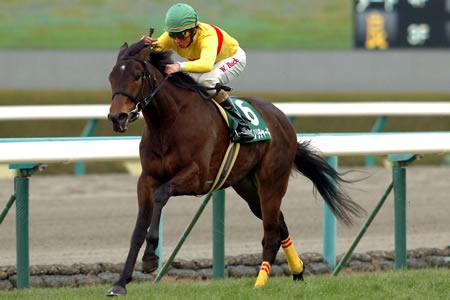 【競馬】 コパノリチャードが引退。レックススタッドで種牡馬入り