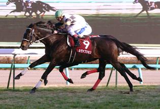 【競馬】 ネヴァブション(牡10)がJRA競走馬登録を抹消、種牡馬入りへ 09年・10年AJC杯連覇など重賞3勝