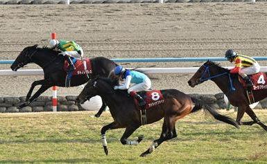 【競馬】 2014年、重賞は1番人気買っときゃ当たる